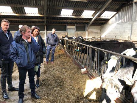 Beleid met boerenverstand, VVD wil wethouder Landbouw